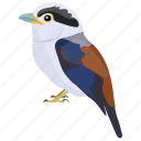 bird, colorful bird, passerine bird, pearl-breasted swallow, welcome swallow icon