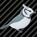 bird, bridled titmouse, crested tit, songbird, titmice icon