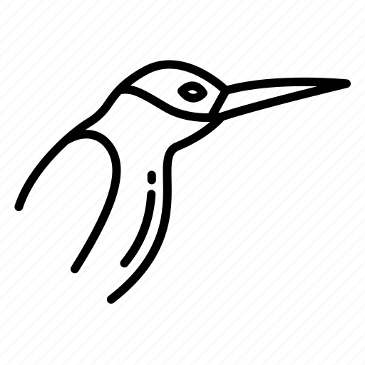 Humming, bird icon - Download on Iconfinder on Iconfinder