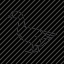 bird, duck duck goose, goose, mean bird icon