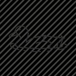 bird, common bird, duck, duck in water, pond icon