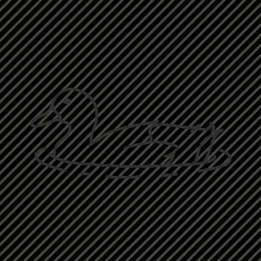 Bird, common bird, duck, duck in water, pond icon - Download on Iconfinder