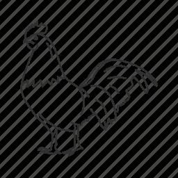 bird, chicken, cock, common bird, male chicken, rooster icon