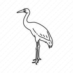 bird, stork icon