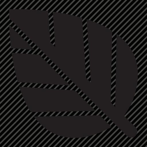 how to get zencash ico