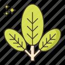 food, options, vegetables, veggie icon