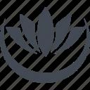 buddhism, flower, lotus, religion