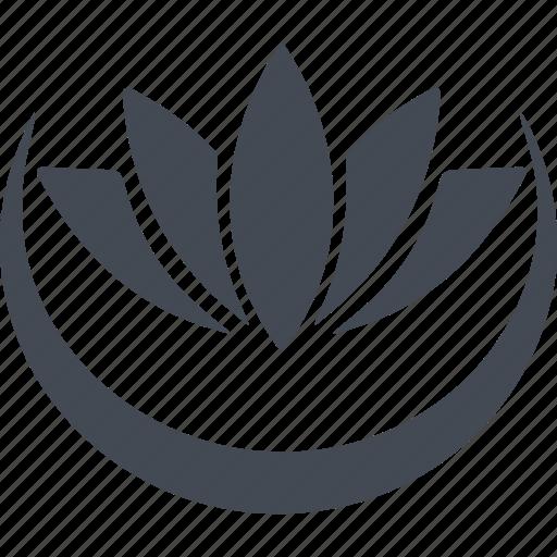 buddhism, flower, lotus, religion icon