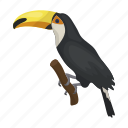 animal, bird, branch, toucan icon