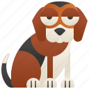 animal, beagle, canine, friend, pet icon