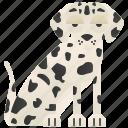 adorable, dalmatian, dog, kennel, pet icon