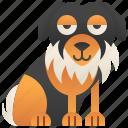 australian, dog, pedigree, pet, shepherd icon