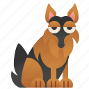 animal, friend, german, pedigree, shepherd icon