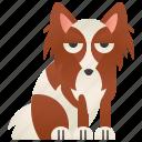 cute, dog, domestic, papillion, small icon