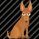 canine, dog, hound, pedigree, pharaoh icon