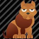 dog, pedigree, pet, pitbull, purebred icon
