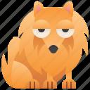 cute, dog, furry, pomeranian, small icon