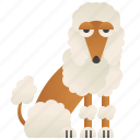 adorable, dog, fluffy, pet, poodle icon