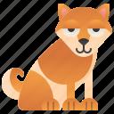 dog, domestic, japanese, purebred, shiba icon
