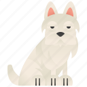 cute, pet, puppy, terrier, white icon