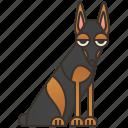 canine, doberman, pet, pinscher, purebred icon
