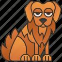 dog, friendly, golden, pet, retriever icon