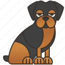 breed, canine, domestic, guardian, rottweiler icon