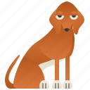 african, azawakh, elegant, sighthound, tall icon