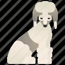 bedlington, fur, pedigree, terrier, watchdog icon