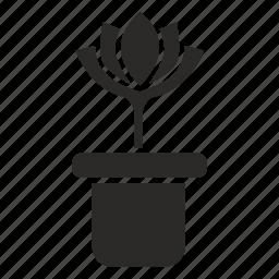 bud, flower, pot, rose icon