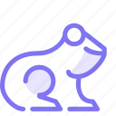 animal, frog, wild animal icon
