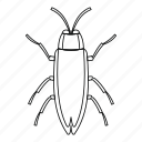 beetle, bug, cockroach, insect, line, outline, wildlife icon