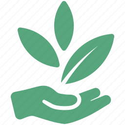 business startup, hand, leaves, start up icon