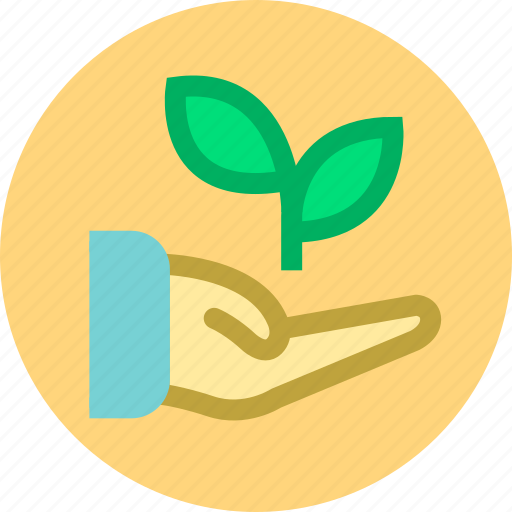 financial management, fund, growth icon