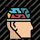 brain, idea, intelligence, mind, think icon