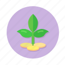 business growth, coins, investment, plant icon