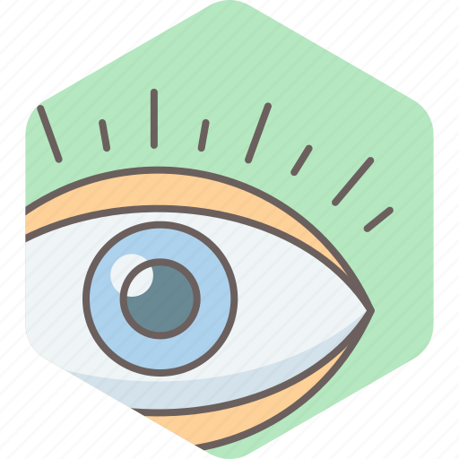 check up, eye, find, see, view, vision icon