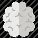 brain, brainstorm, mind, thinking