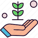 flower, hand, nature, plant