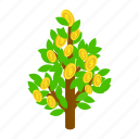 business, coin, currency, dollar, isometric, prosperity, tree icon