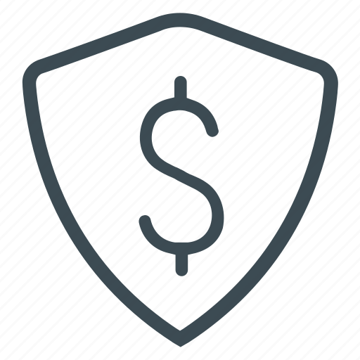 money, protected, security icon