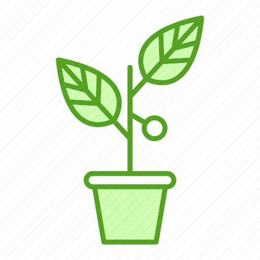 bussines, finance, invest, marketing, plant icon