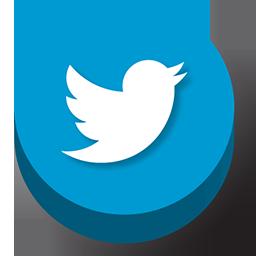 buttonz, twitter icon