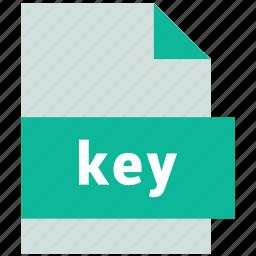 key, presentation file format icon