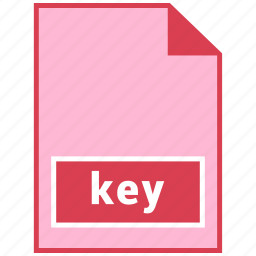 file format, key icon