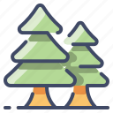 camping, christmas, forest, spruce, tree, xmas
