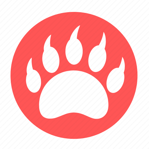 animal, bear, camping, danger, footprint, predator, wild icon