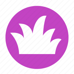 camping, flower, grass, grassy, herb, plant icon