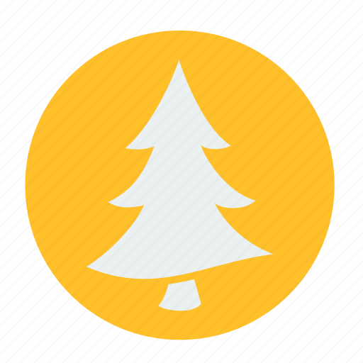 camping, forest, origin, pine, tree icon