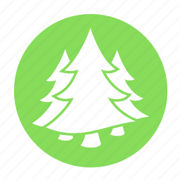 camping, forest, forestry, jungle, tree, trees icon